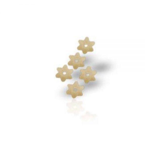 Stelline petites pâtes de Michele Portoghese pour les soupes