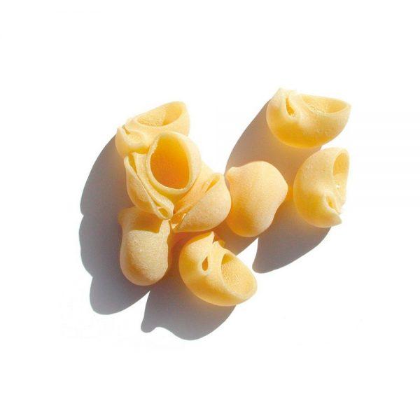 Les pâtes artisanales de Benedetto Cavalieri des Pouilles en forme de joli coquillage sont des lumache.