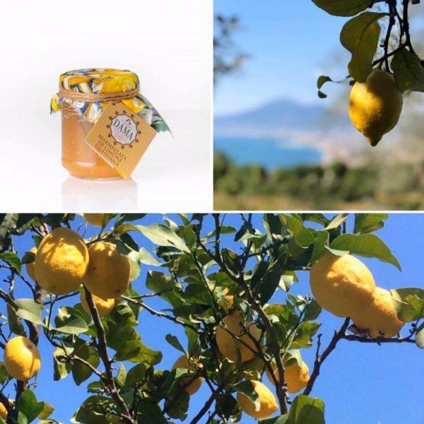 Pomo Dama produit une marmelade de citron incomparable car naturelle et faite avec amour dans un coin magnifique face au Vézuve.