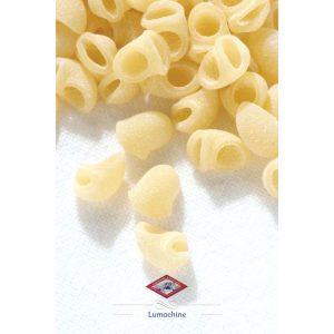 Les petites coquillettes de notre enfance version qualitative et artisanale de Setaro, producteur de Naples.