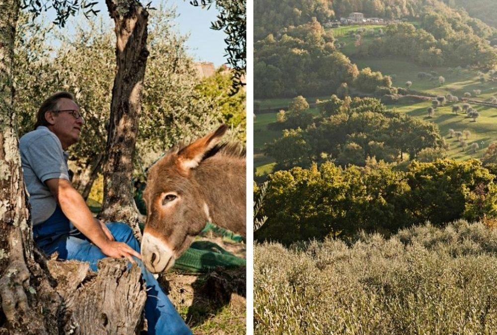 """Vous trouverez l'huile d'olive """"Tenuta di Carma"""" dans l'épicerie fine italienne Rennaise """"Les Bonnes Pates"""""""